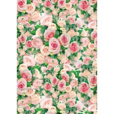 Бумага (меловка) упаковочнаяc женская (розы розовые) Ed-N-348m