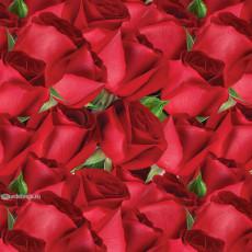 Бумага (меловка) упаковочная (Розы) Ed-N-393m