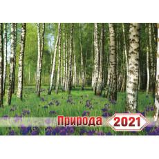 """Календарь настенный перекидной на скобе на 2021г. """"Природа"""" Ex-KD21-G07"""