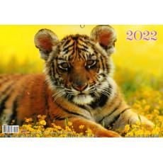 Квартальный  календарь на 1 спирали на 2022 год  EX-BG22-01