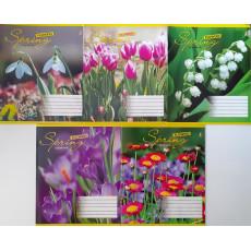 """Тетрадь на 12 л. Линия. """"Spring Flower"""" 1 вересня (YES) 1B-676156"""