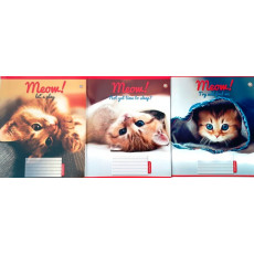 "Тетрадь на 12 л. Линия. ""Meow"" 1 вересня (YES) 1B-791341"