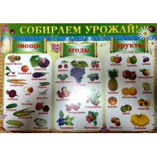 "Плакат ""Собираем урожай"" Ed-pl-0010r"