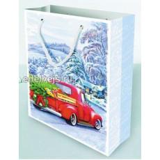 Подарочный пакет новогодний Ed-P1-166