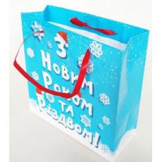 Подарочный пакет новогодний (квадрат малый) ED-P3-044
