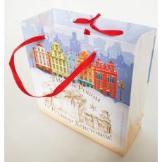 Подарочный пакет новогодний (квадрат малый) ED-P3-045