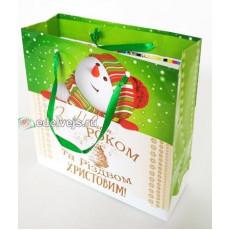 Подарочный пакет новогодний (квадрат малый) ED-P3-046