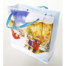 Подарочный пакет новогодний (квадрат малый) ED-P3-050
